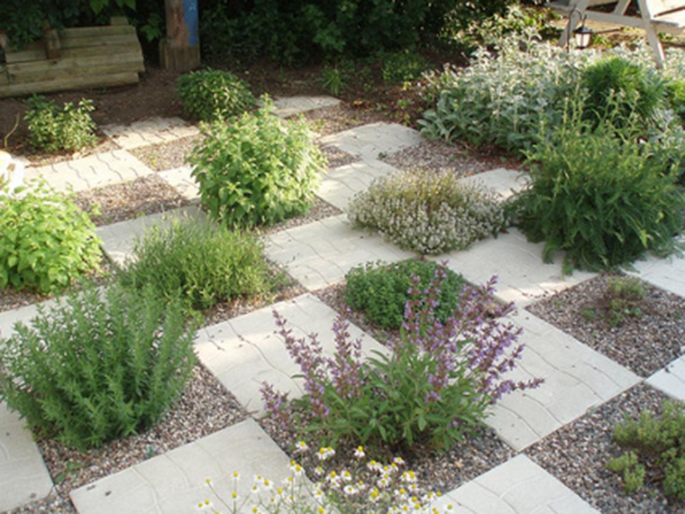 Jardineras con cactceas fotos jardineras con cactceas - Imagenes de jardineras ...