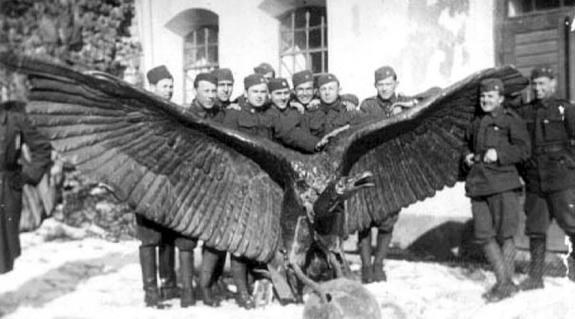 A levett turul a munkási várban cseh katonákkal a 20-as években. Jól érzékelhetők a madár hatalmas méretei