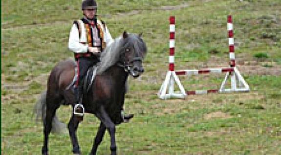 A győztes Vitalij Sztepanyuk és lova az akadálypályán