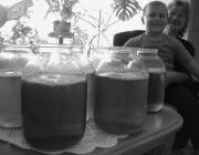 Fejes Irén unokájával és a csodagombákkal