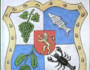 Nagyszőlős címere